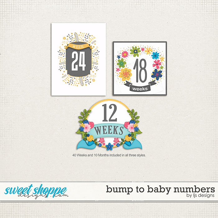 Bump To Baby Numbers by LJS Designs