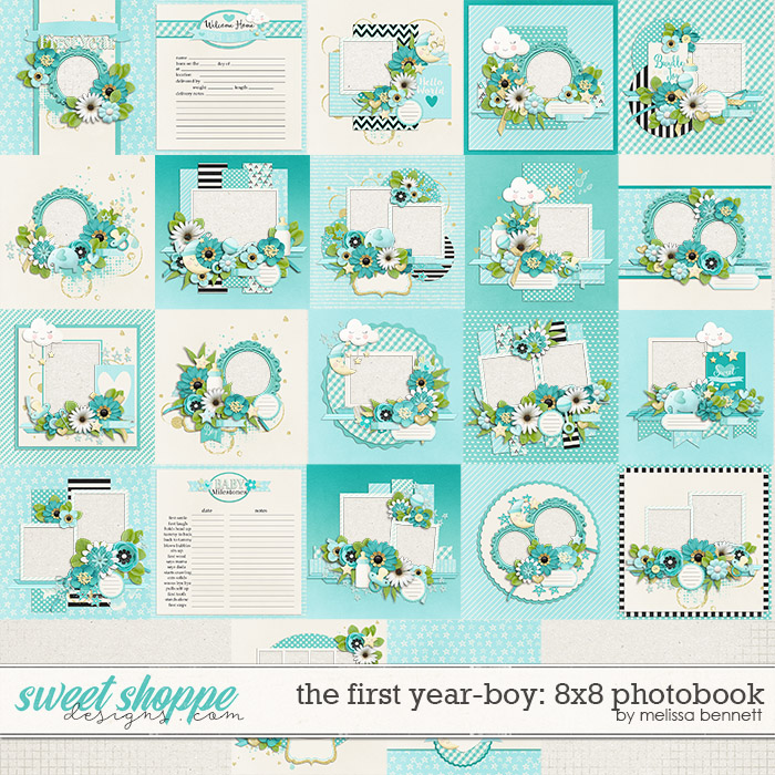 The First Year-Boy 8x8 Photobook by Melissa Bennett