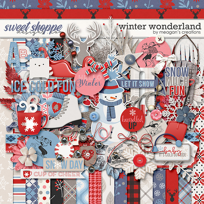 Winter Wonderland by Meagan's Creations