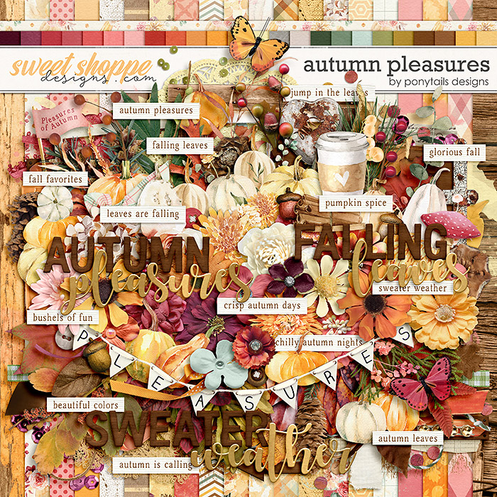 Autumn Pleasures by Ponytails
