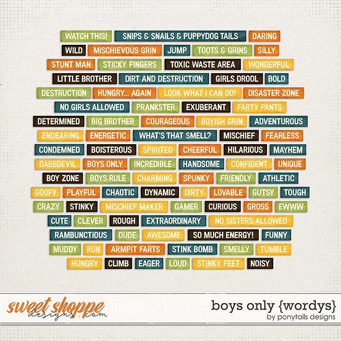 Boys Only Wordys by Ponytails