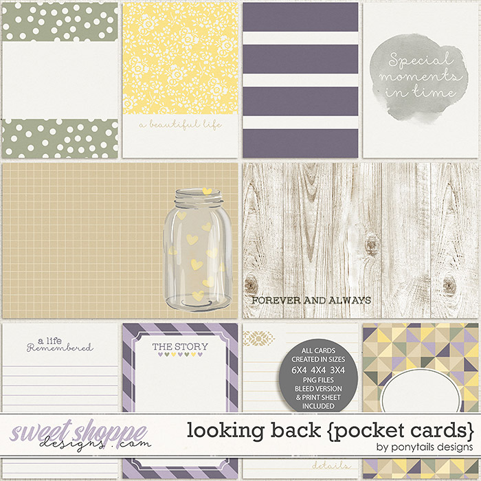 Looking Back Pocket Cards by Ponytails