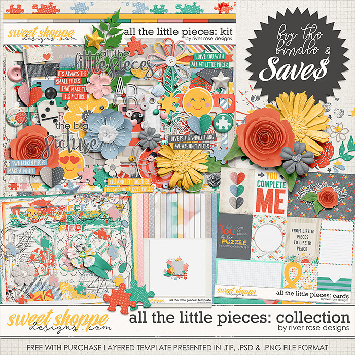 All the Little Pieces: Collection + FWP by River Rose Designs