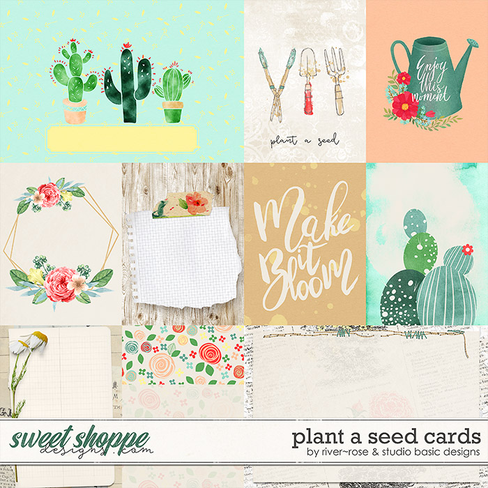Plant A Seed Cards by River Rose & Studio Basic Designs