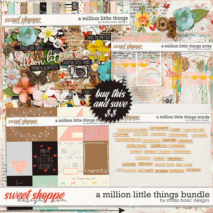 A Million Little Things Bundle by Studio Basic