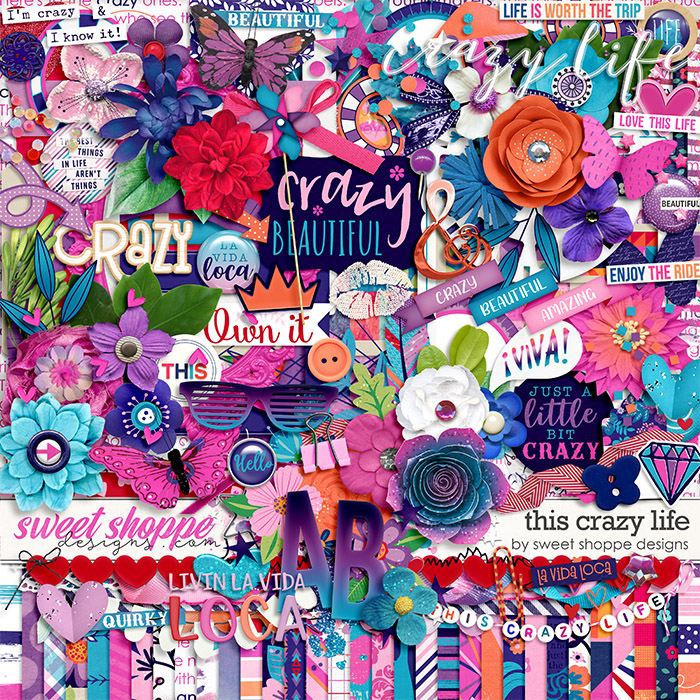 *OFFER EXPIRED* This Crazy Life by Sweet Shoppe Designs