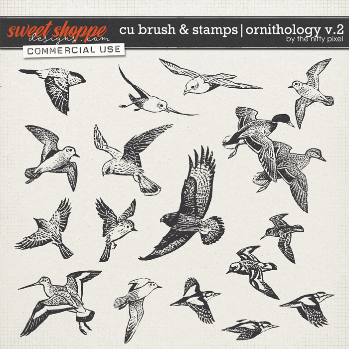 CU BRUSH & STAMPS | ORNITHOLOGY V.2 by The Nifty Pixel