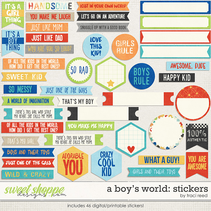 A Boy's World: Stickers by Traci Reed