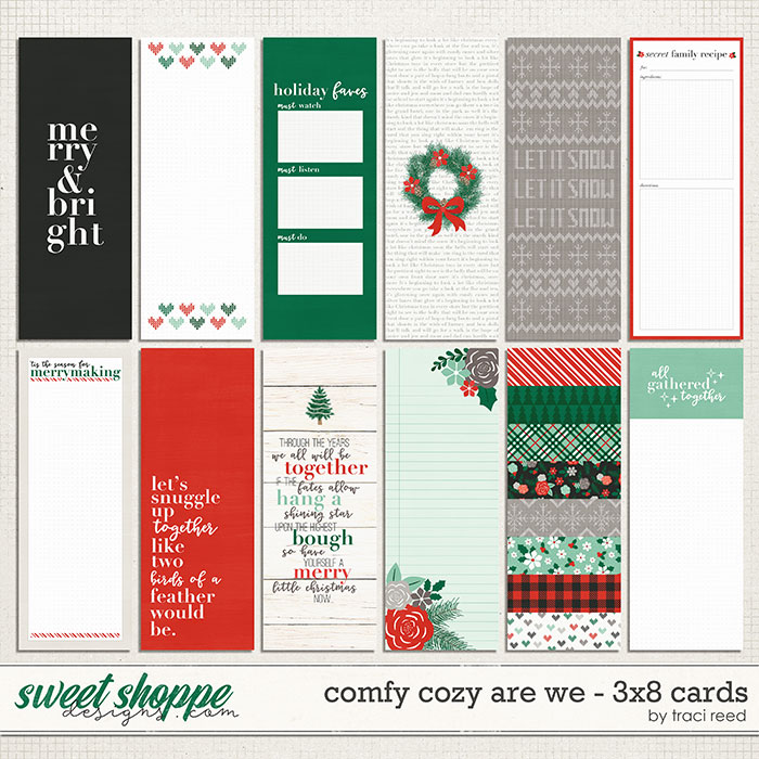 Comfy Cozy Are We 3x8 Journal Cards by Traci Reed