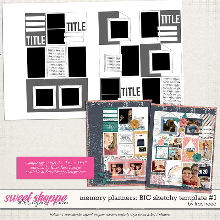 Memory Planners - Big - Sketchy #1 by Traci Reed