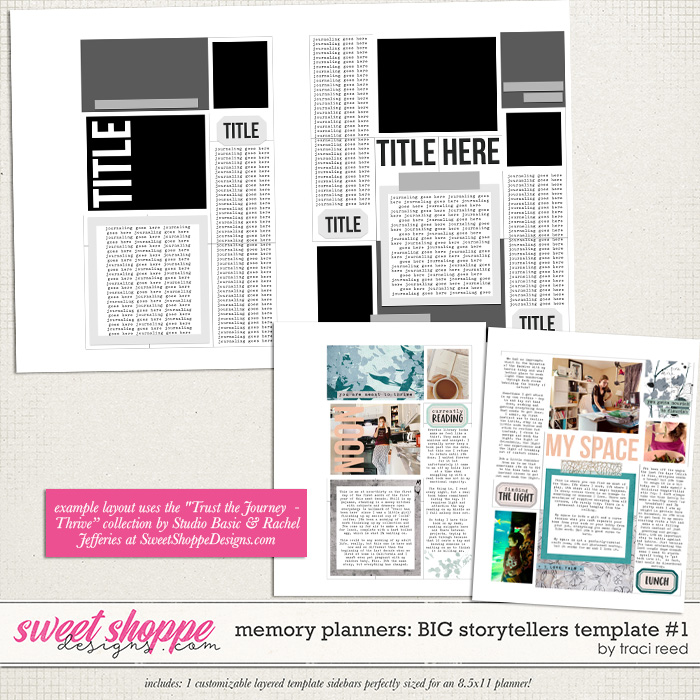 Memory Planners - Big - Storytellers #1 by Traci Reed