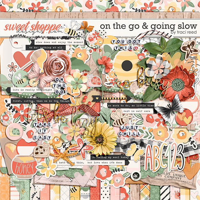 On The Go & Going Slow by Traci Reed