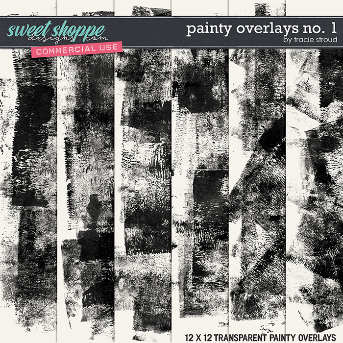 CU Painty Overlays no. 1 by Tracie Stroud