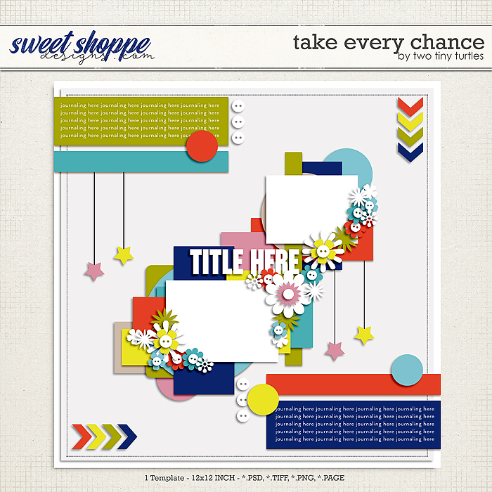 Take Every Chance by Two Tiny Turtles