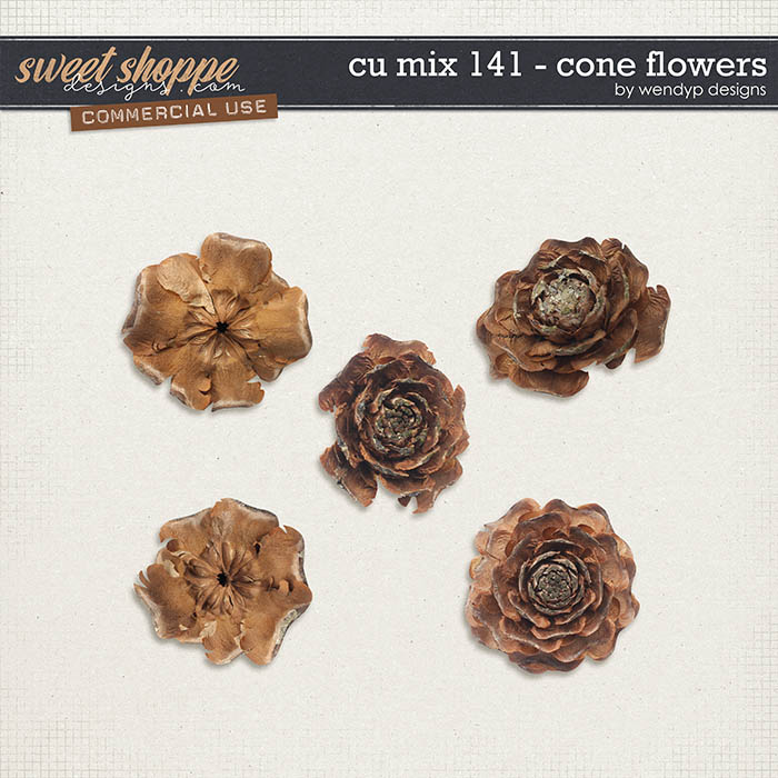 CU Mix 141 - cone flowers by WendyP Designs