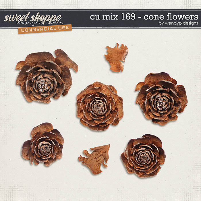 CU Mix 169 - Cone flowers by WendyP Designs