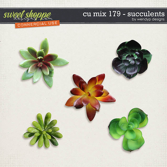 CU Mix 179 - succulents by WendyP Designs