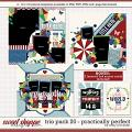 Cindy's Layered Templates - Trio Pack 20: Practically Perfect by Cindy Schneider