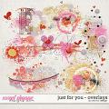Just For You - Overlays by Red Ivy Design