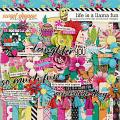 Life is a Llama Fun by Becca Bonneville & Brook Magee