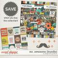 Mr. Awesome {bundle} by Blagovesta Gosheva