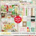 A Moment To Remember Bundle by Studio Basic
