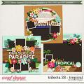 Brook's Templates - Trifecta 28 - Tropical by Brook Magee