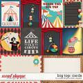 Big Top- CARDS by Studio Flergs & Kristin Aagard