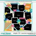 Cindy's Layered Templates - Single 173: Summer Sensation 14 by Cindy Schneider