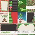Adventure: Christmas- CARDS by Studio Flergs
