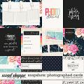Snapshots: Photographed Cards by Kristin Cronin-Barrow