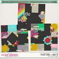Brook's Templates - Half Life - Set 9 by Brook Magee
