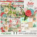 Plant A Seed Bundle by River Rose & Studio Basic Designs