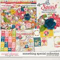 Something Special Collection by River Rose Designs