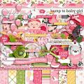 Bump To Baby Girl by LJS Designs