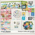 Bump To Baby Girl Bundle by LJS Designs