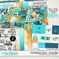 Birthday Boy Bundle by Digital Scrapbook Ingredients