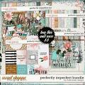 Perfectly Imperfect Bundle by Studio Basic