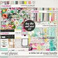 A Little Bit Of Crazy Bundle by Studio Basic