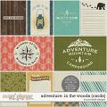Adventure: In the Woods Pocket Cards by Ponytails
