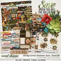 Scrap Your Stories: Zoo- BUNDLE by Studio Flergs & Kristin Cronin-Barrow