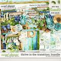 Thrive in the Transition: Bundle by Kristin Cronin-Barrow
