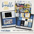 CAN'T STOP WON'T STOP {the bundle} by Janet Phillips
