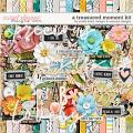 A Treasured Moment Kit by Studio Basic and WendyP Designs