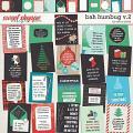 Bah Humbug v.2 Cards by Erica Zane
