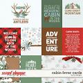 Cabin Fever Cards by LJS Designs
