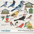 Snow Whoa Woe Birds by Clever Monkey Graphics