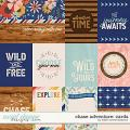 Chase Adventure: Cards by Kristin Cronin-Barrow