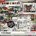 Crush It Bundle by Simple Pleasure Designs and Studio Basic
