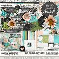 No Ordinary Life: Collection + FWP by River Rose Designs